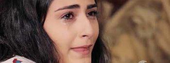 Sari Aghjik Episode 22
